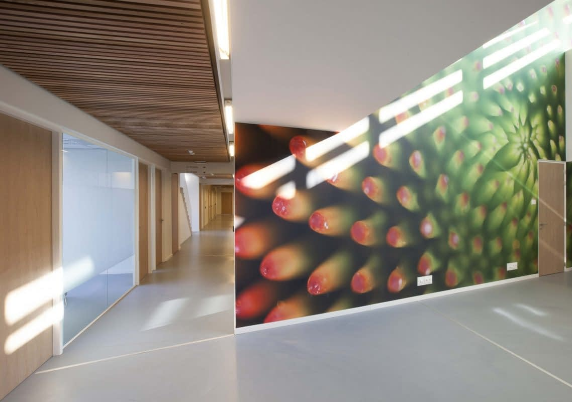 Wedersoet Ons Bilzen a-tract architectuer
